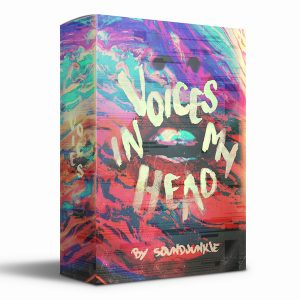 voices-in-my-head